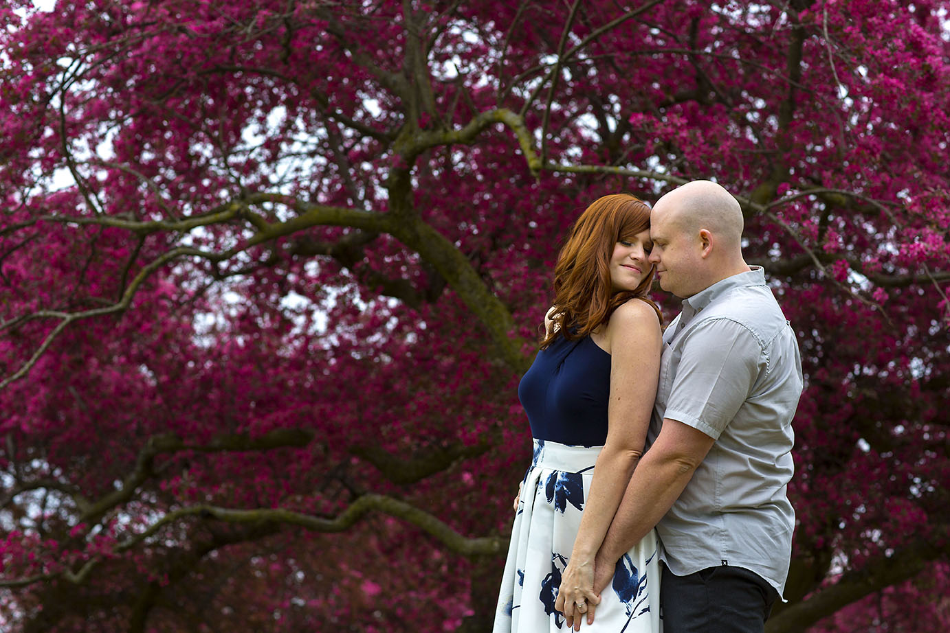 Engagement Photo Session in Royal Botanical Gardens | John and Heather